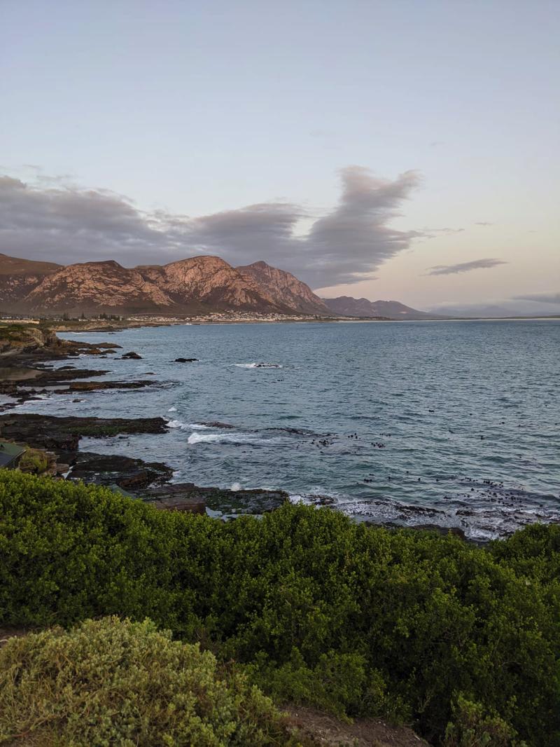 Südafrika urlaub Hermanus